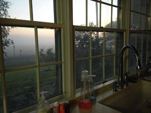 kitchen-window